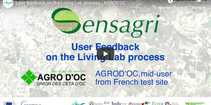 User feedbacks on the Living Lab process